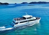 Bay of Islands Full Day Tour