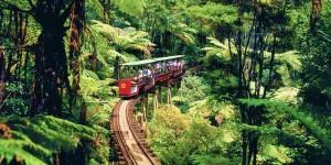 Driving Creek Railway, Photo Credit: www.davidkerrphotography.co.nz
