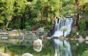 Rainbow Springs Rotorua