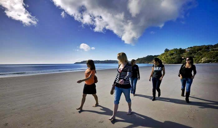 Waiheke Island Explorer Tour