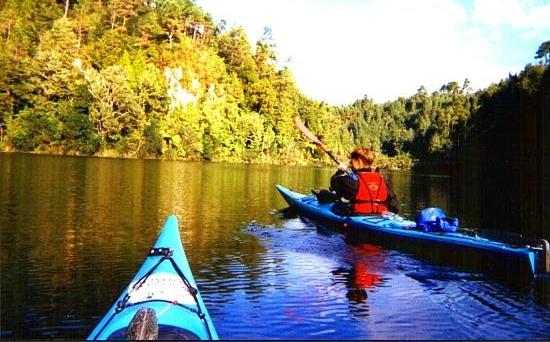 Waimarino Wairoa Guided River Tour