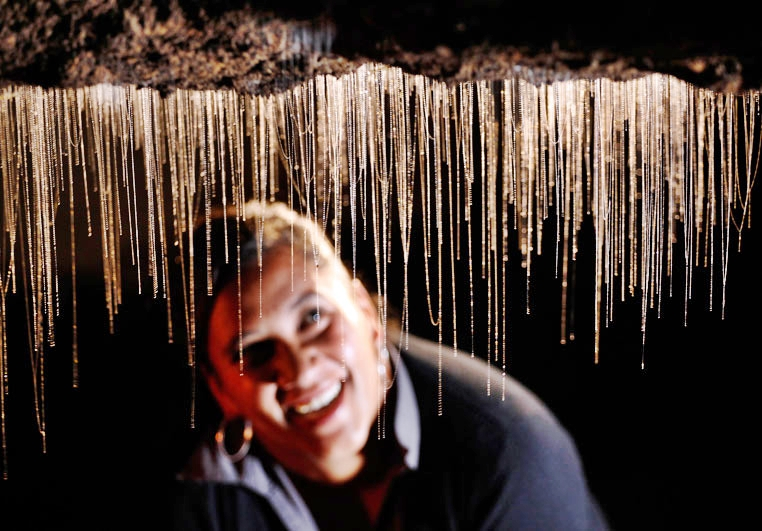 Te Anau Glowworms Tour