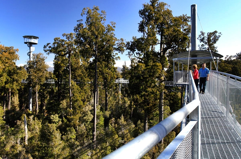 Westcoast Treetop Walk & Cafe