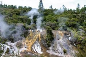 NZ Riverjet - Thermal Safari