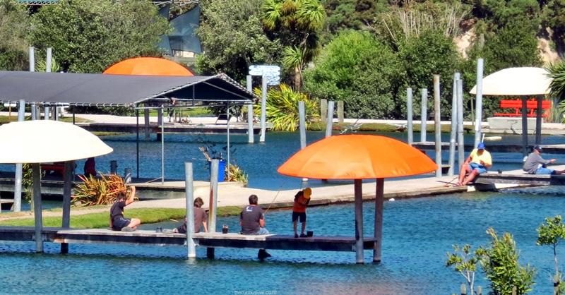 Huka Prawn Park Taupo