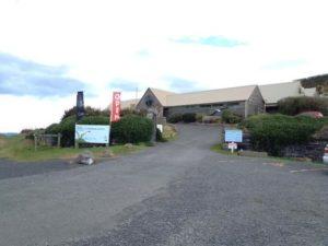Royal albatross centre + penguin viewing
