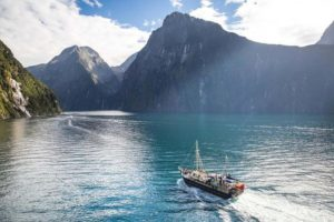 Real Journeys – Milford Sound Nature Cruise